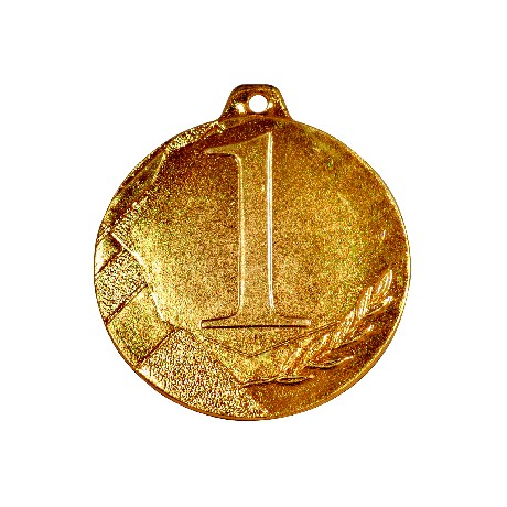 Medal K1 GT20